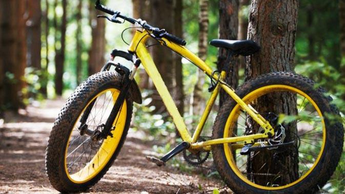Sepeda Gunung Murah di Bawah 2 Juta