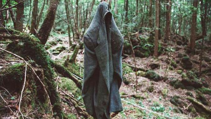 Hutan Aokigahara Jepang